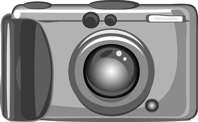 appareil photo compact avec viseur