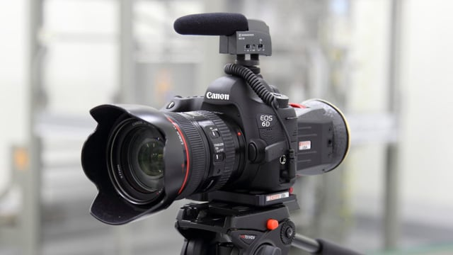canon d6